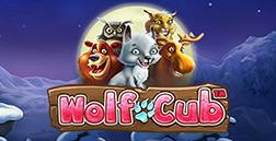 Fvb_wolf_club_(252x129)